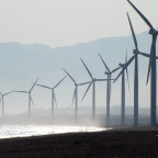 Dumping arms exports could see UK become 'global leader' in green energy revolution