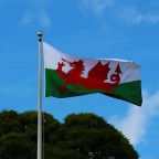 Welsh independence: Covid-19 pandemic has 'shaken people's belief' in Westminster, activist says